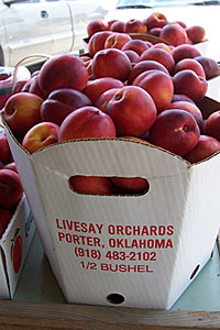 Locally grown vegetables and fruit at Livesay Orchards Farm Market, Porter Peaches, and Pumpkin Patch in Porter, Oklahoma.