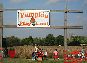 Pumpkin Patch, u-pick apples and more at Livesay Orchards Farm Market and Pumpkin Patch in Porter, Oklahoma.
